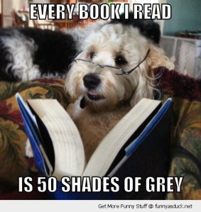 funny-reading-book-dog-50-shades-of-grey-pics