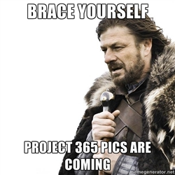 brace yourself project 365 pics are coming